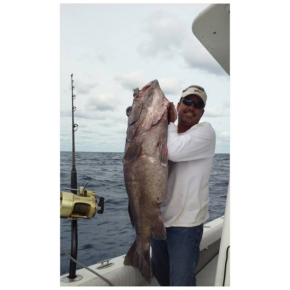 Saltwater fish pictures pompano beach fishing for Fish hunt fl